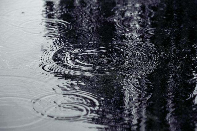 梅雨の風景